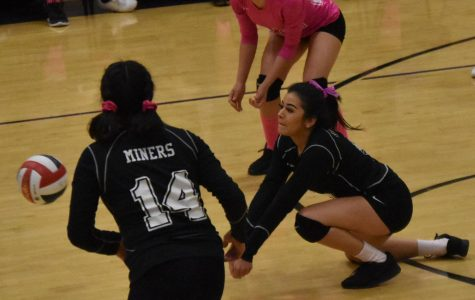 Volleyball Team Falls In Five Games In Team's Final Match