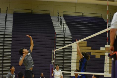 Boys Volleyball Destroys Western