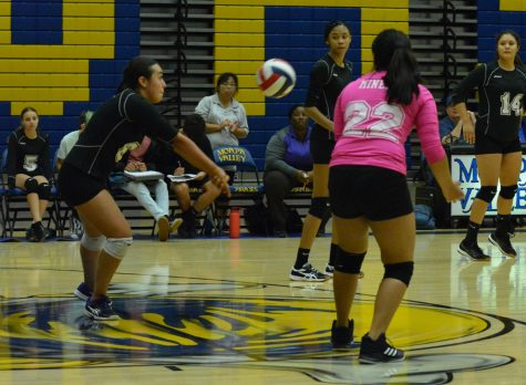 Volleyball Team Falls Twice Despite Battle With Sky Pointe