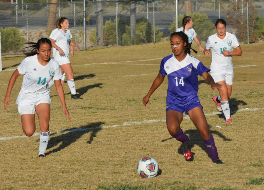 Girls Soccer Gets Eliminated In First Round Of Playoffs