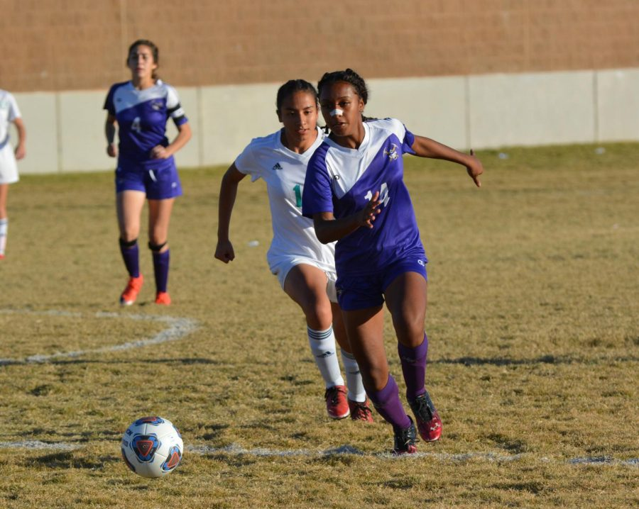 Girls Soccer To Face Off Against Western In Monday's Regional Quarterfinals