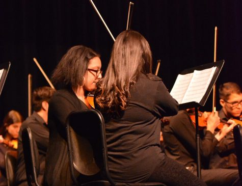 Annual Pre-Festival Orchestra Combines Sunrise With Our Middle Schools
