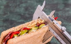 Athletes Must Focus On Their Diets While Staying At Home
